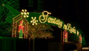 fantasy in lights groupon