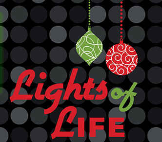 lights of life 2014