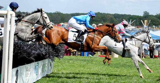 Steeplechase Atlanta Photos Images