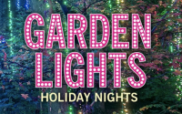 Discounts: Garden Lights, Holiday Nights at the Atlanta Botanical Garden