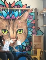 Coffee + Cats = Win: Java Cats Cafe in Atlanta & Marietta & Happy Tabby Cat Cafe in Atlanta