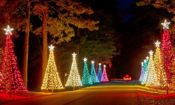 Where to See Christmas Lights in Neighborhoods & Attractions