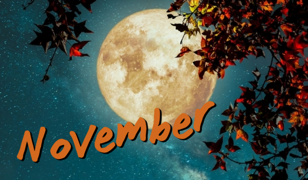 Best Events in November