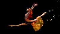 Discounts: Atlanta Ballet's Firebird at Cobb Energy Centre