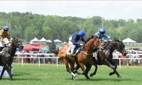 Discounts: Georgia Steeplechase on April 7, 2018