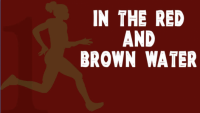 Discounts: In the Red and Brown Water at Theatre in the Square in Marietta