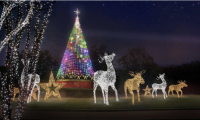 Discounts: Magical Nights of Lights at Lanier Islands