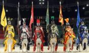 Discounts to Medieval Times in Lawrenceville