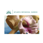 Discounts for Orchid Daze: Lasting Impressions at the Atlanta Botanical Garden